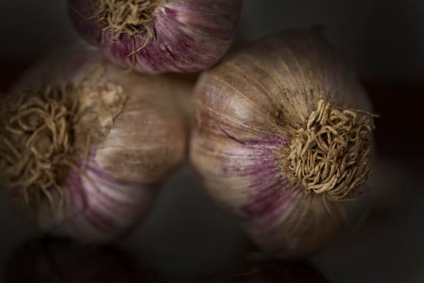 SWF_Garlic